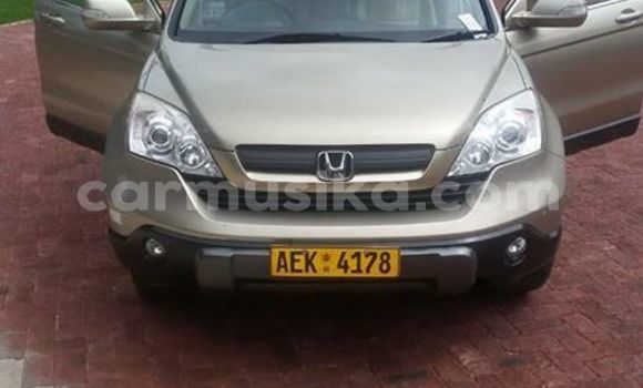 Buy Used Honda CR-V Other Car in Harare in Harare