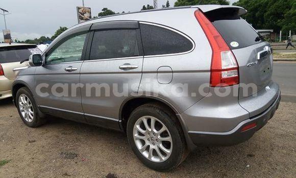 Buy Used Honda CR-V Other Car in Harare in Harare