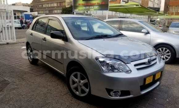 Buy Used Toyota Runx Blue Car in Epworth in Harare