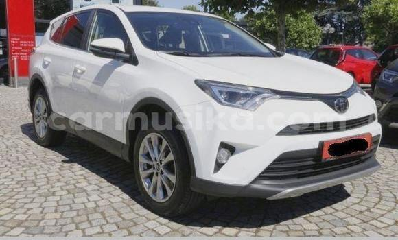 Buy Used Toyota RAV4 White Car in Harare in Harare