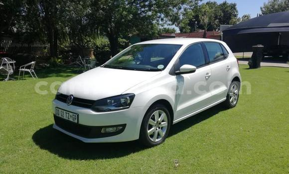 Buy Used Volkswagen Polo White Car in Harare in Harare