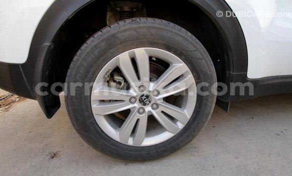 Buy Import Kia Sportage White Car in Import - Dubai in Harare