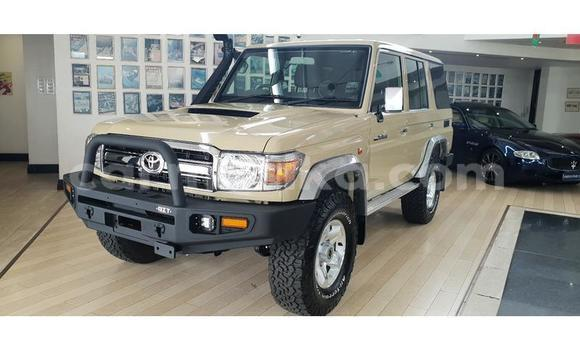 Buy Used Toyota Land Cruiser Brown Car in Mutare in Manicaland