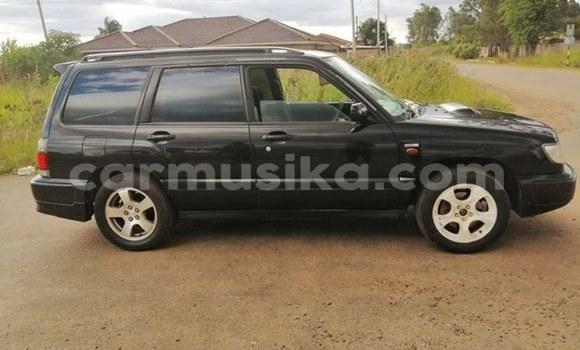 Buy Used Subaru Forester Black Car in Harare in Harare