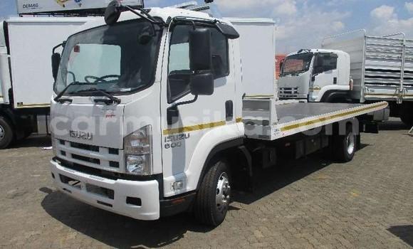 Buy Used Isuzu FTR 850 White Truck in Beitbridge in Matabeleland South