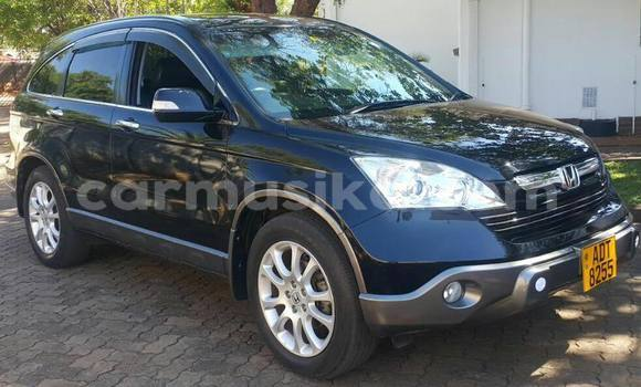 Buy Used Honda CR–V Black Car in Bulawayo in Bulawayo
