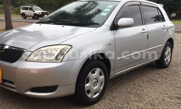 Buy Used Toyota Runx Silver Car in Harare in Harare