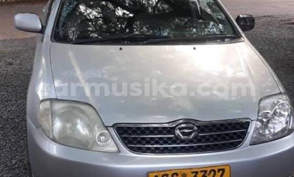 Buy Used Toyota Corolla Silver Car in Bulawayo in Bulawayo