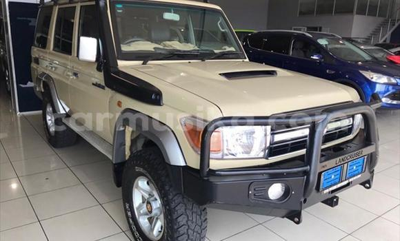 Buy Used Toyota Land Cruiser Other Car in Beitbridge in Matabeleland South