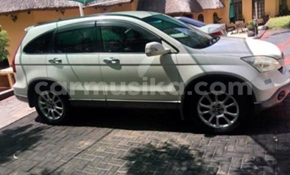 Buy Used Honda CR–V White Car in Harare in Harare