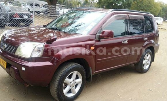 Buy Used Nissan X–Trail Red Car in Alexandra Park in Harare