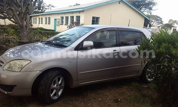 Buy Used Toyota Runx Silver Car in Alexandra Park in Harare