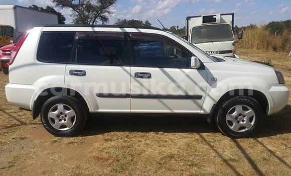 Buy Used Nissan X-Trail White Car in Alexandra Park in Harare