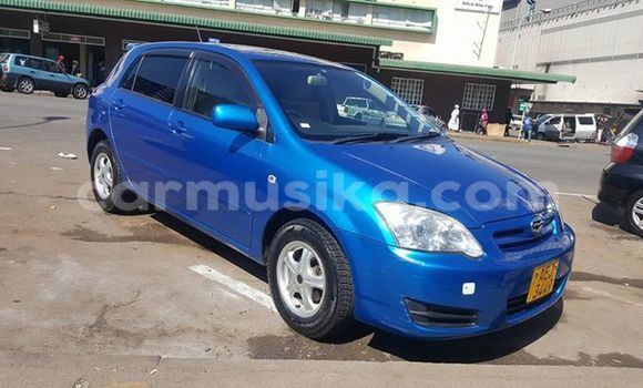 Buy Used Toyota Runx Blue Car in Alexandra Park in Harare
