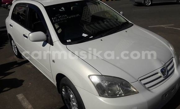 Buy Used Toyota Allex White Car in Alexandra Park in Harare