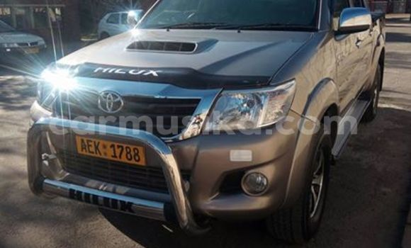 Buy Used Toyota Hilux Other Car in Alexandra Park in Harare