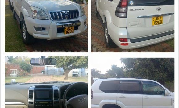 Buy Used Toyota Prado White Car in Alexandra Park in Harare