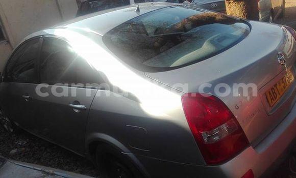 Buy Used Nissan Primera Silver Car in Alexandra Park in Harare