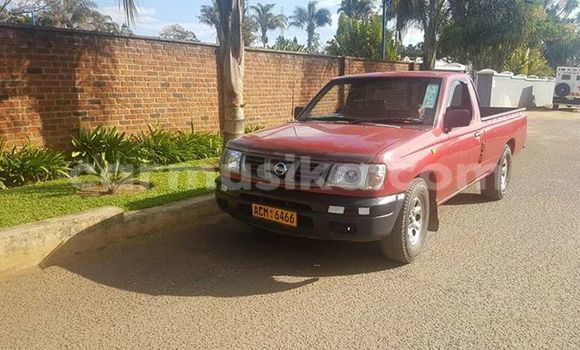 Buy Used Nissan Hardbody Red Car in Alexandra Park in Harare