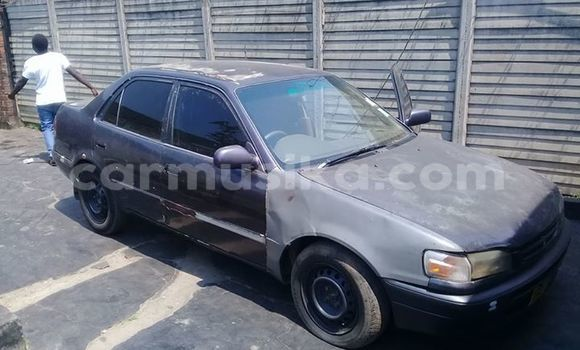 Buy Used Toyota Corolla Black Car in Alexandra Park in Harare