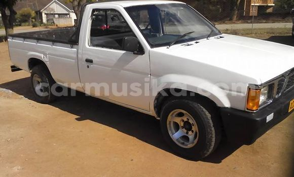 Buy Used Nissan Hardbody White Car in Alexandra Park in Harare