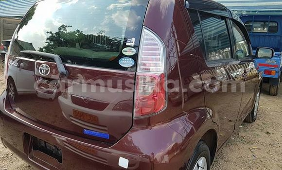 Buy Used Toyota Paseo Other Car in Alexandra Park in Harare