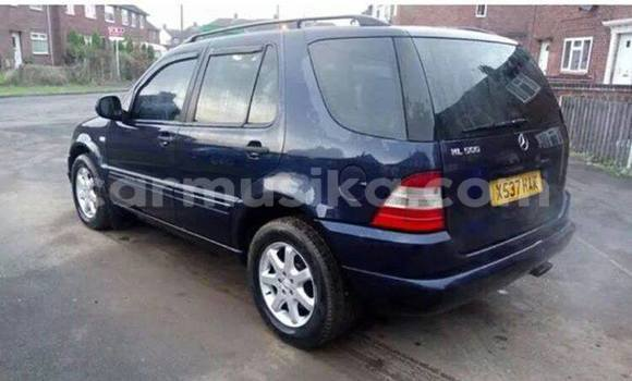 Buy Used Mercedes‒Benz ML-Class Blue Car in Alexandra Park in Harare