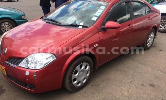Buy Used Nissan Primera Red Car in Chipinge in Manicaland