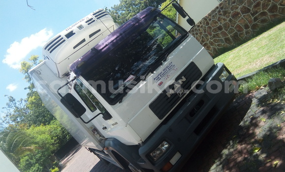 Buy Used Man Silent White Truck in Greendale in Harare