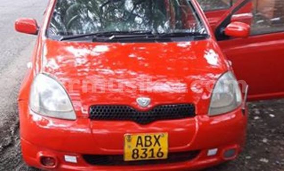 Buy Used Toyota Vitz Red Car in Bulawayo in Bulawayo