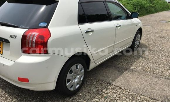Buy Used Toyota Runx White Car in Bulawayo in Bulawayo
