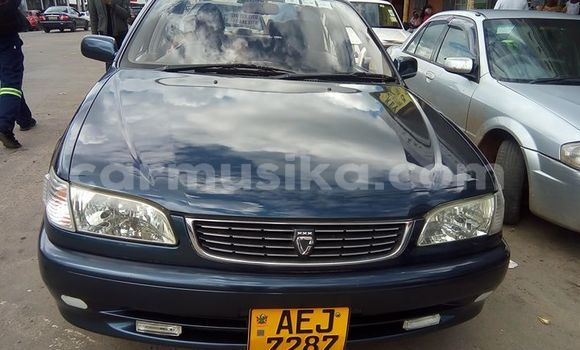 Buy Used Toyota Corolla Other Car in Bulawayo in Bulawayo