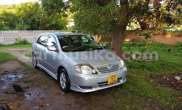 Buy Used Toyota Allex Silver Car in Bulawayo in Bulawayo
