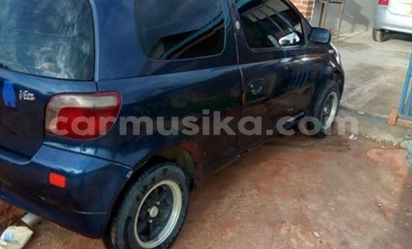 Buy Used Toyota Vitz Blue Car in Bulawayo in Bulawayo