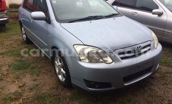 Buy Used Toyota Corolla Other Car in Bulawayo in Bulawayo