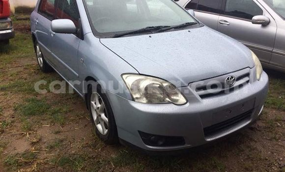 Tenga Tsaru Toyota Corolla Zvimwe Mota in Bulawayo in Bulawayo