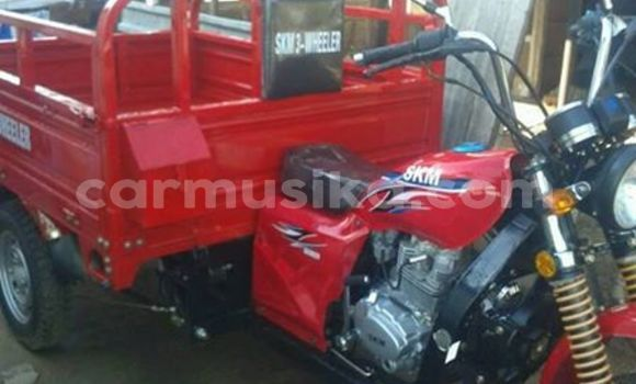Buy Used SKM 3 Wheeler Red Moto in Bulawayo in Bulawayo
