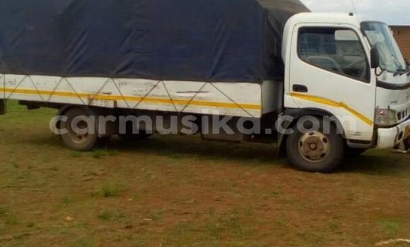 Buy Used Hino 300 White Truck in Harare in Harare