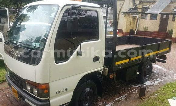 Buy Used Isuzu Elf White Truck in Harare in Harare