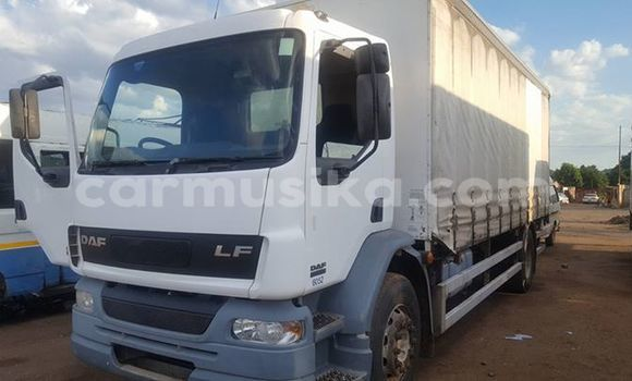 Buy Used DAF LF White Truck in Harare in Harare