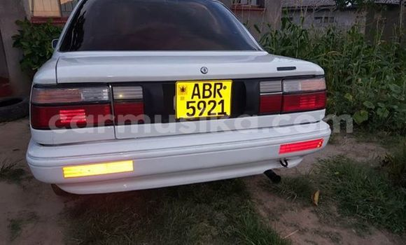 Buy Used Toyota Corolla White Car in Mutare in Manicaland