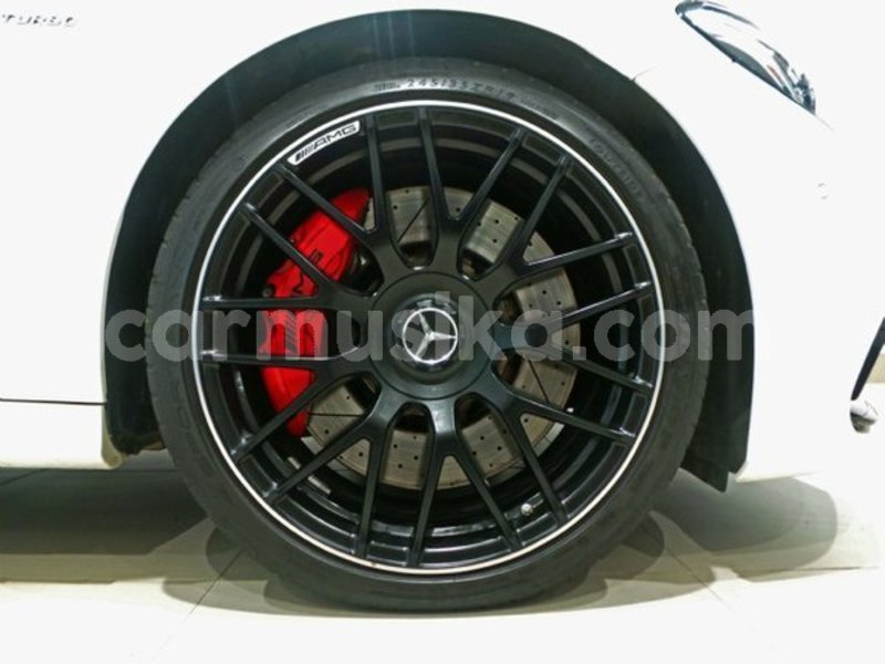 Big with watermark q8