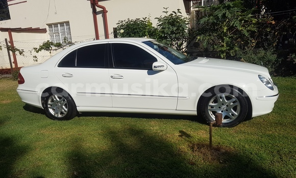 Buy Used Mercedes‒Benz E–Class White Car in Gweru in Midlands