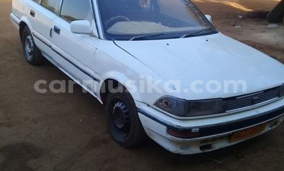 Buy Used Toyota Corolla White Car in Chegutu in Mashonaland West