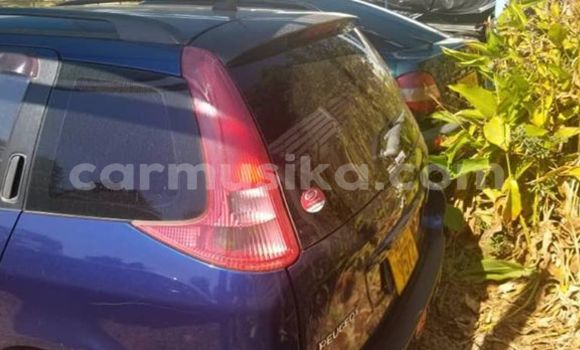 Buy Used Peugeot 206 Blue Car in Harare in Harare