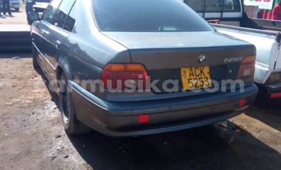 Buy Used BMW 5–Series Other Car in Harare in Harare