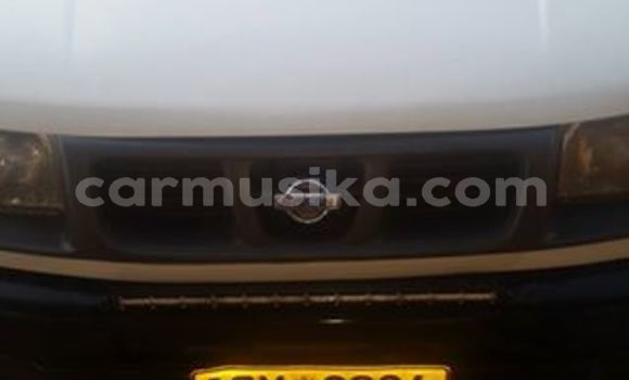 Buy Used Nissan Pickup White Car in Harare in Harare