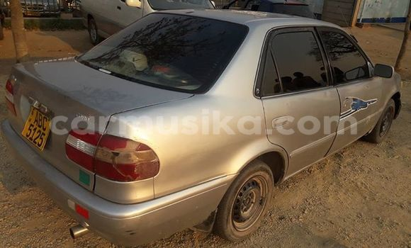 Buy Used Toyota Corolla Silver Car in Mutare in Manicaland