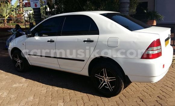 Buy Used Toyota Corolla White Car in Harare in Harare