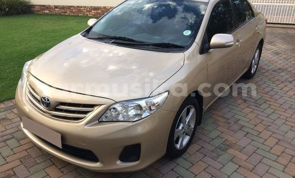Buy Imported Toyota Corolla Beige Car in Harare in Harare
